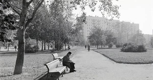 Бескудниковский бульвар утром 1980г.jpg