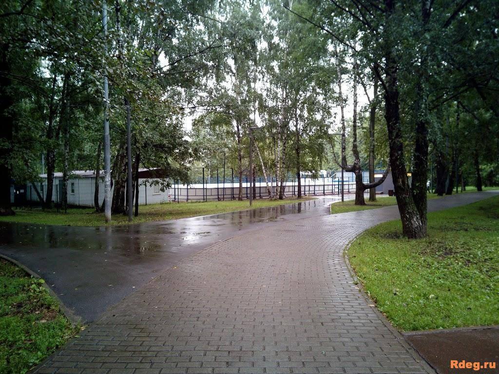 Парк Северные Дубки7.jpg