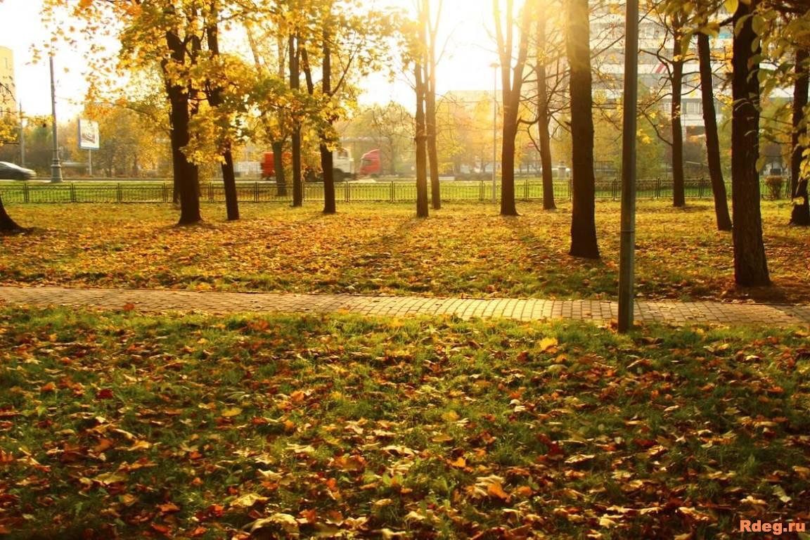 Парк имени Святослава Фёдорова-11.jpg