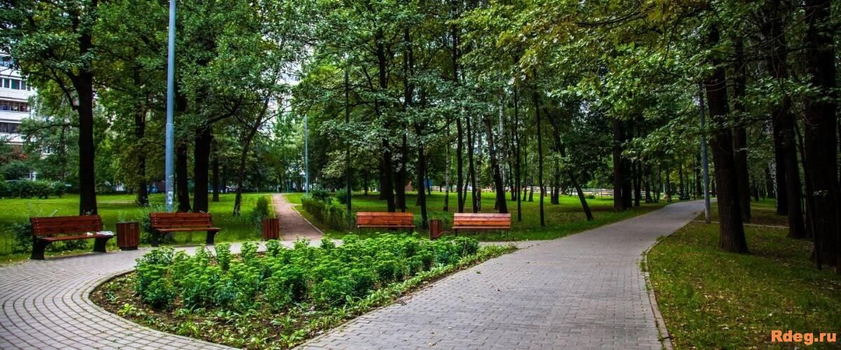 Парк Северные Дубки8.jpg